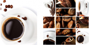 Система за самоконтрол, принципите на Haccp за кафе бар
